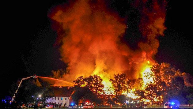 Bauernhof wurde Raub der Flammen - Gänse gerettet (Bild: Werner Kerschbaummayr/foto-kerschi.at)