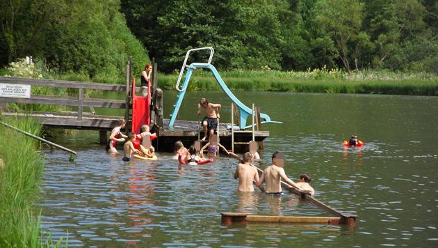 """In diesem Teich wurde  Gerhard Schneider zum Lebensretter. (Bild: """"Krone"""")"""
