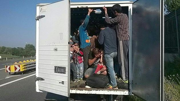 86 in Klein-Lkw gepferchte Flüchtlinge entdeckt (Bild: Landespolizeidirektion Niederösterreich/AP)