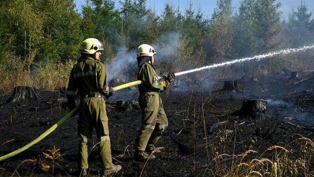 Helfer bei den Löscharbeiten (Bild: APA/BFK WAIDHOFEN A. D. THAYA/STEFAN MAYER)