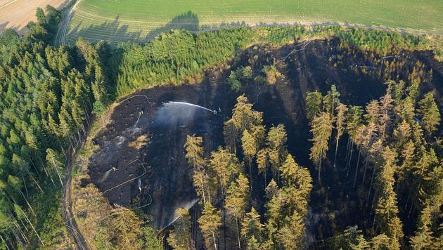 Die Löscharbeiten der Feuerwehr in Gilgenberg (Bild: APA/BFK WAIDHOFEN A. D. THAYA/STEFAN MAYER)