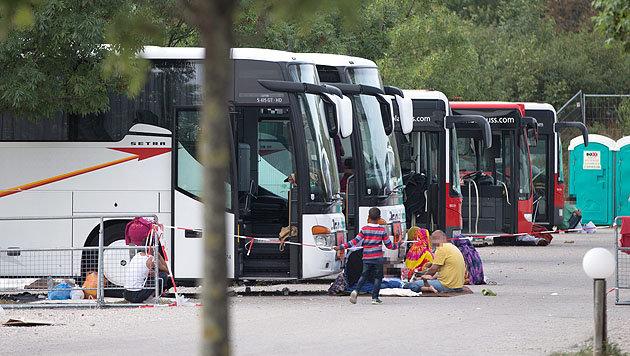 Traiskirchen: Bus-Quartiere durch Zelte ersetzt (Bild: APA/Georg Hochmuth)