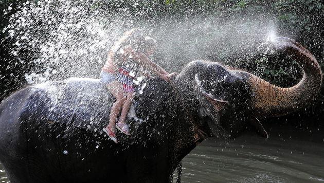 Sri Lanka: Strahlend schönes Land (Bild: APA/EPA/STRINGER)