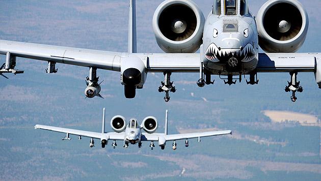 """Zwei """"Warzenschweine"""" im Einsatz (Bild: military.com)"""