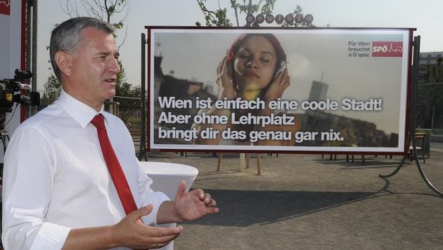 "SPÖ-Plakate: Probleme der ""besten Stadt der Welt"" (Bild: APA/HERBERT PFARRHOFER)"