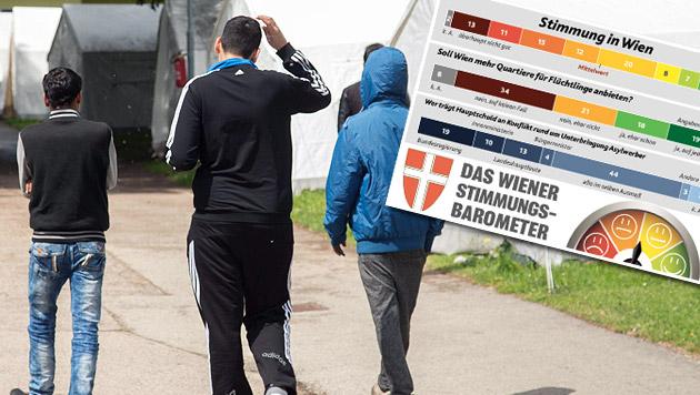 """Wiener lehnen weitere Flüchtlingsquartiere ab (Bild: APA NEUMAYR MMV, """"Krone"""")"""