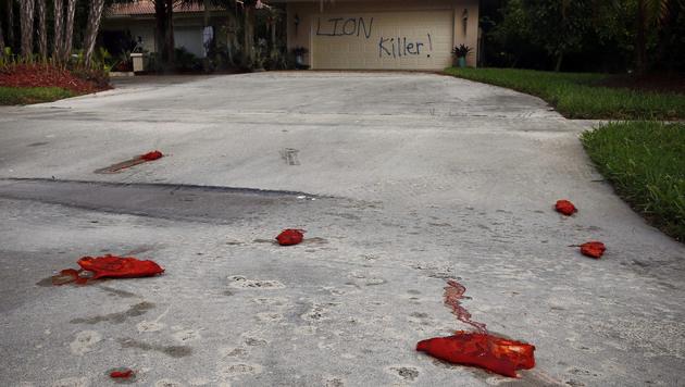 Auch Schweinefüße in Palmers Einfahrt zeugen von der Wut der Tierfreunde gegen den Zahnarzt. (Bild: AP)