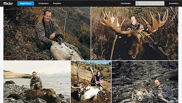 Zahlreiche Fotos u.a. auf Flickr zeugen von der Jagdleidenschaft von Walter Palmer. (Bild: flickr.com)