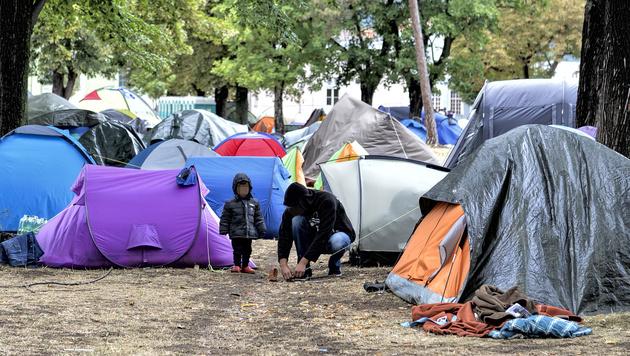 Zelte im Erstaufnahmezentrum Traiskirchen (Bild: APA/HERBERT NEUBAUER)