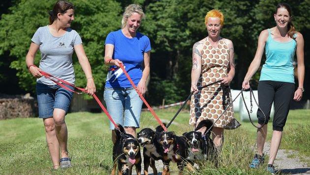 """Tierheim-Mitarbeiterinnen und Helferinnen mit Wilflingseder (2. v. re.) und den """"Tarrenz-Hunden"""" (Bild: Tierschutzverein für Tirol/Grießenböck)"""