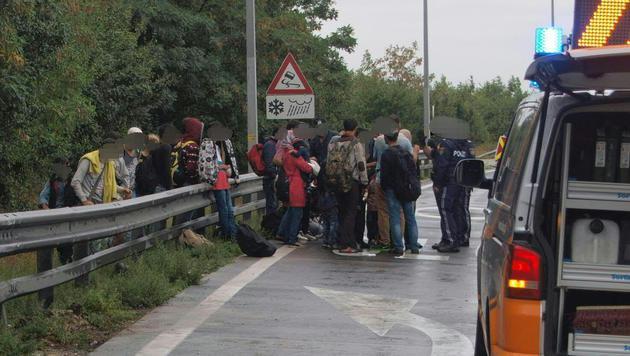 Sechs Verletzte bei Unfall mit Schlepperfahrzeug (Bild: APA/LPD NÖ)