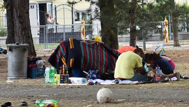 Obdachlose Flüchtlinge in Traiskirchen (Bild: Patrick Huber)