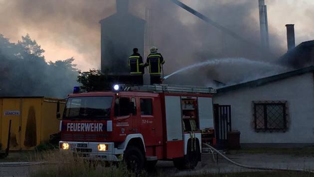 Der Holzverarbeitungsbetrieb nahe Amstetten stand in Flammen. (Bild: BFK Amstetten)