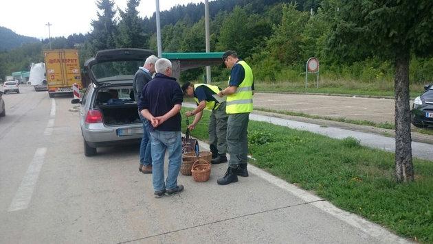 Auch diese Italiener hatten zu viele Waldfrüchte gesammelt, die beschlagnahmt wurden. (Bild: Hannes Wallner)