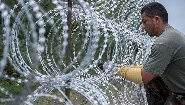 """""""Schweiz muss Grenze mit Stacheldraht abriegeln"""" (Bild: APA/EPA/TAMAS SOKI)"""