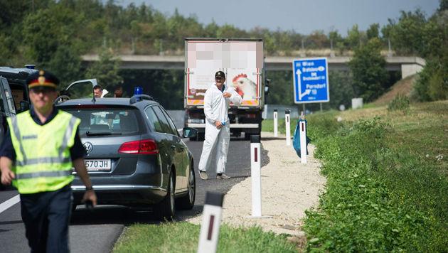 Bis zu 50 Flüchtlinge in Schlepper-Lkw erstickt (Bild: Andi Schiel)