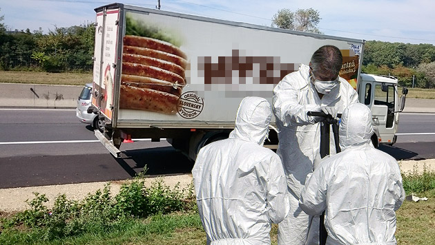 Todes-Lkw auf A4: Verfahren findet in Ungarn statt (Bild: Christian Schulter, APA/HANS PUNZ)