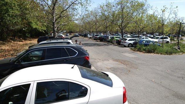 Auf diesem Parkplatz kam es zum blutigen Angriff. (Bild: Gerhard Bartel)