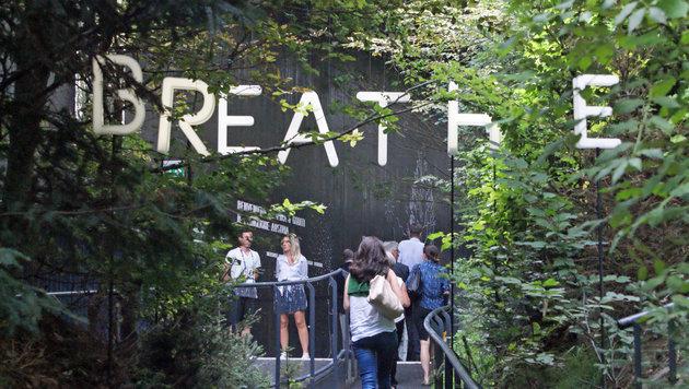 """Der Pavillon """"breathe.austria"""" lockt mit heimischer Waldstimmung samt angenehm kühler Waldluft. (Bild: Fritz Schneeberger)"""