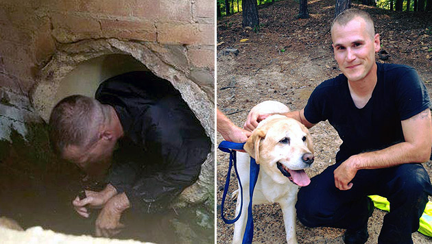 US-Polizist rettete Labrador-Rüden aus Kanalsystem (Bild: facebook.com/LongviewPolice)