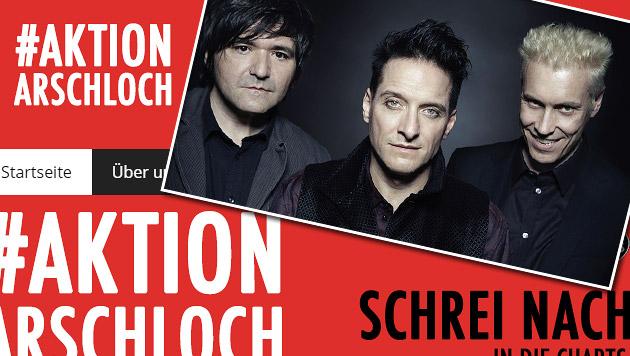 """Fans der Punkband Ärzte starten """"Aktion Arschloch"""" (Bild: Nela König, www.aktion-arschloch.de)"""