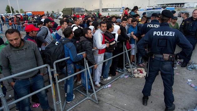 800 Flüchtlinge zu Fuß auf B10 unterwegs (Bild: APA/EPA/CSABA KRIZSAN)