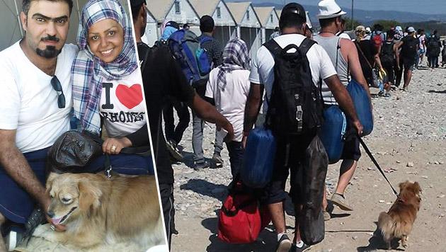 Syrer nahmen Hund mit auf beschwerliche Flucht (Bild: facebook.com/UNHCR-Skopje)