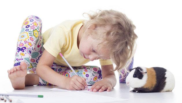 Tierische Lehrer machen Kindergartenkinder stark (Bild: thinkstockphotos.de)