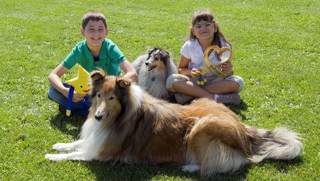 Pet Ribbon bringt Therapie-Tiere in Sonderschule (Bild: Pet Ribbon 2015)