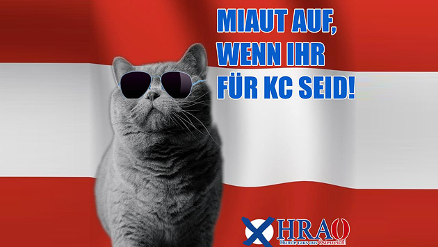 Kurioser Stimmenfang wenige Wochen vor Wien-Wahl (Bild: facebook.com)