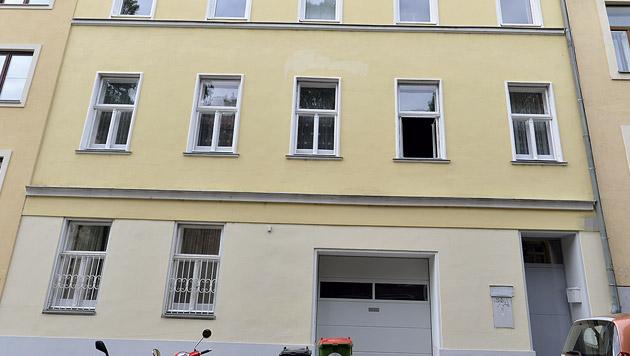 Stiefbruder mit Kopfschuss getötet - U-Haft (Bild: APA/HERBERT NEUBAUER)