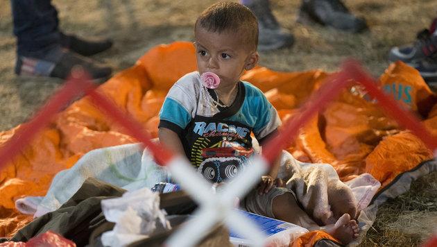 Flüchtlings-Ansturm im Burgenland ungebrochen (Bild: APA/ERWIN SCHERIAU)