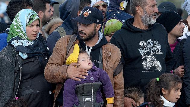 Regierung bereits 2014 vor Asyl-Krise gewarnt (Bild: APA/EPA/ROLAND SCHLAGER)