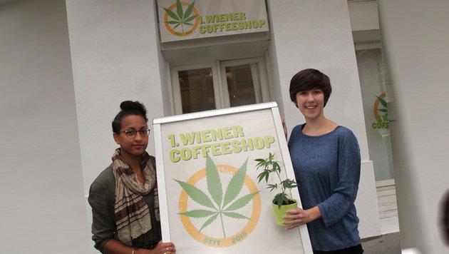 """""""""""Cannabis ist gesünder als Alkohol!"""" (Bild: Andi Schiel)"""""""