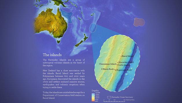Neuseeland richtet neues Meeresschutzgebiet ein (Bild: APA/EPA/NZ Ministry of Environment)