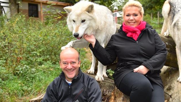Sie kamen sich mit den Timberwölfen nicht ins Gehege: Andy Lee Lang und Susanna Hirschler (Bild: Andreas Tischler)