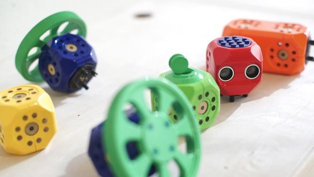 Wiener Start-up baut Klötzchen-Roboter für Kinder (Bild: Robo Wunderkind)