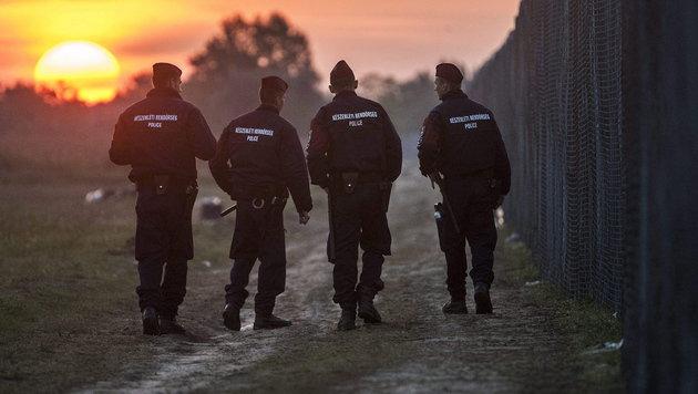 Patrouille an der serbisch-ungarischen Grenze in Röszke (Bild: APA/EPA/SANDOR UJVARI)
