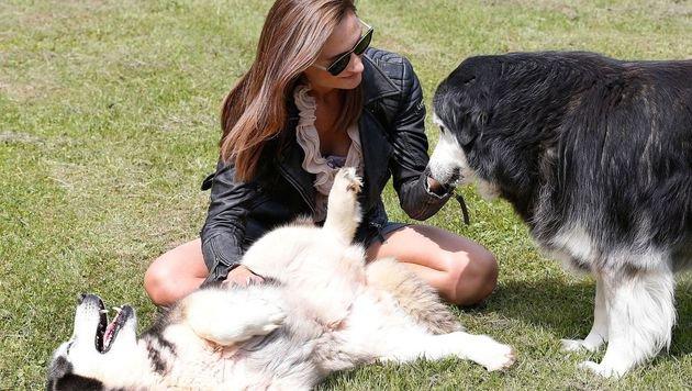 """""""Krone Tierecke""""-Mitarbeiterin Diana Zwickl besuchte die Tierpension. (Bild: Zwefo)"""