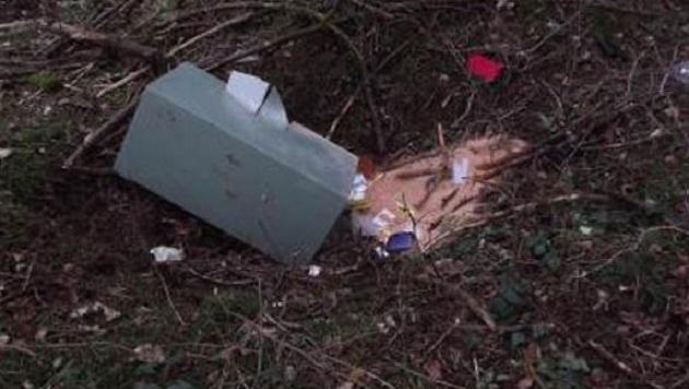 Der entsorgte Tresor in einem Waldstück bei Werfen (Bild: Polizei)