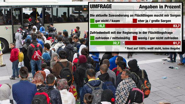 Studie: 84 Prozent über Zuwanderung besorgt (Bild: APA/NEUMAYR/BIRGIT PROBST, krone.at-Grafik)