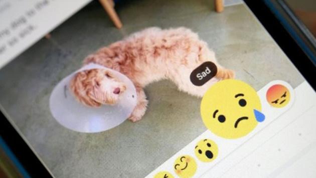 """""""6 neue Emojis: Gähnt, wenn es euch nicht gefällt (Bild: Newsroom.fb.com/)"""""""