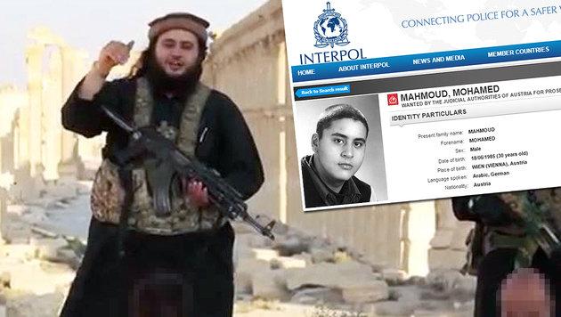 Terrorbraut weilt am Krankenbett von Mohamed M. (Bild: twitter.com, interpol.int)