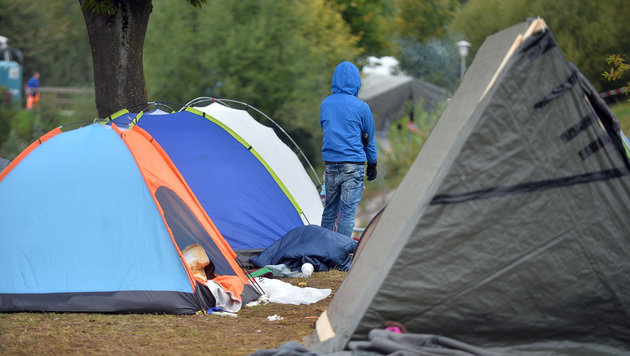 Traiskirchen-Aufnahmestopp: Tausende Obdachlose (Bild: APA/BARBARA GINDL)