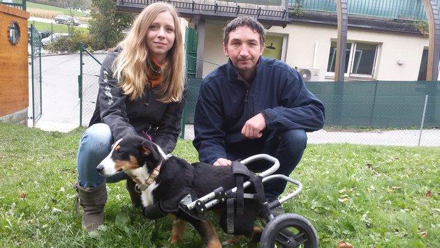 """Gerhard Juen und Kristin Müller mit """"Toni"""" in seinem Rollstuhl. (Bild: Andreas Moser)"""