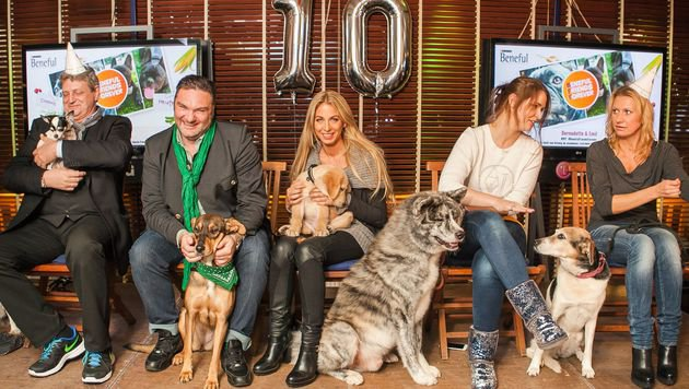 Dieter Chmelar, Martin Leutgeb, Yvonne Rueff, Roxanne Rapp und Angelika Niedetzky mit ihren Hunden (Bild: Purina PetCare Austria/Philipp Lipiarski)