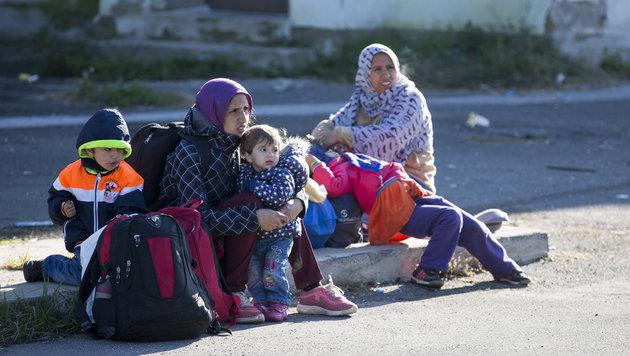 1500 Migranten auf eigene Faust losmarschiert (Bild: APA/ERWIN SCHERIAU)