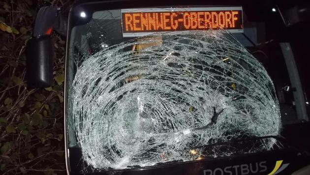 Hirsch durchschlägt bei Unfall Windschutzscheibe (Bild: Polizei)