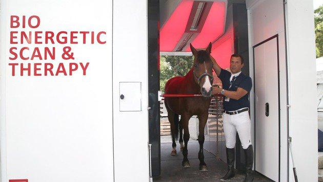 Auch bei der Global Champions-Tour in Wien vertrauten viele ihre hochpreisigen Tiere Equusir an. (Bild: Kristian Bissuti)