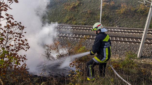 Krähe verursacht Bahndamm-Brand in NÖ (Bild: BFK Baden/Stefan Schneider)